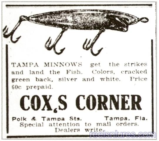 cox tampa minnows